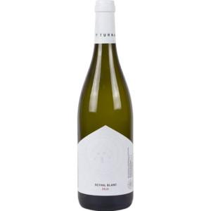 Winnica Turnau - Seyval Blanc